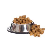Alimentation et friandises pour votre animal de compagnie chat chien